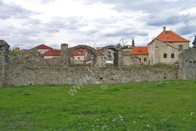 Lipý (hrad)