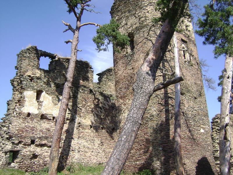 Gutštejn (zřícenina hradu)