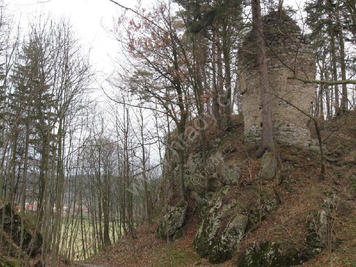 Holštejn (zřícenina hradu)