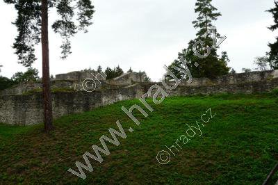 Kozí Hrádek (zřicenina gotického hradu)